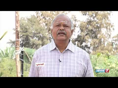 Grow greens and vegetables in your Organic Terrace Graden | Poovali | News7 Tamil