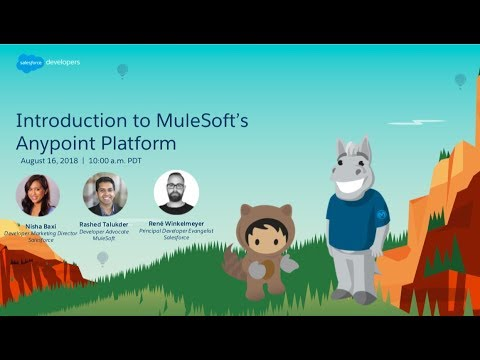 Introduction to the MuleSoft Anypoint Platform | Salesforce Developers