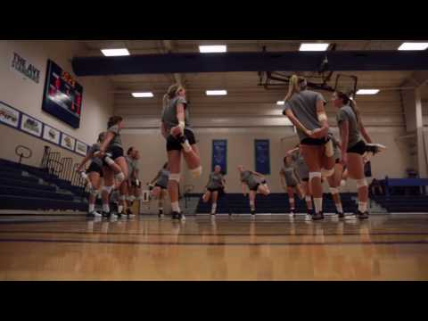 Ave Maria University Volleyball 2016