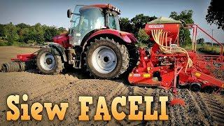 "Siew FACELI 2019 ☆ Case Maxxum 125 & Maschio Gaspardo Aliante 300 ☆ ""Rolnictwo w Pigułce"" #4"
