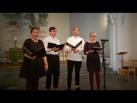 THE MOST BEAUTIFUL RENAISSANCE MUSIC --- Il Bianco e Dolce Cigno