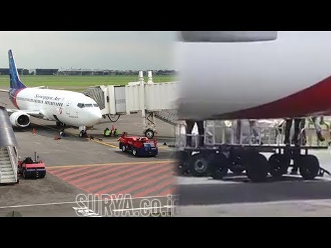 Diprotes karena Diduga Angkut 3 Ton Durian, Sriwijaya Air Sampaikan Klarifikasi