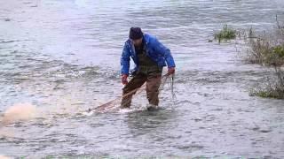 投網で鮭をとる