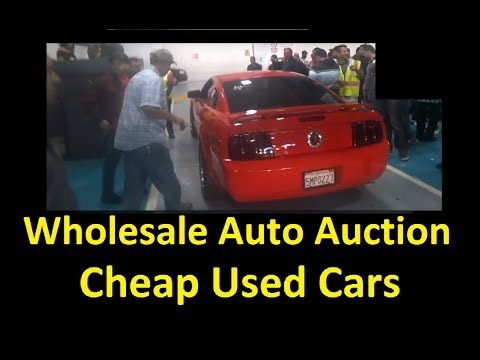 Live Auto Auction Bidding & Buying Wholesale Dealer Auctions Part #2