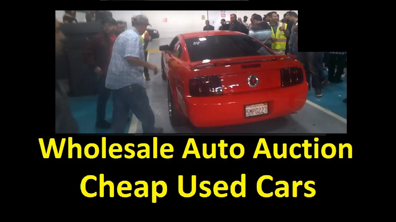 Live Auto Auction Bidding Buying Wholesale Dealer Auctions Part