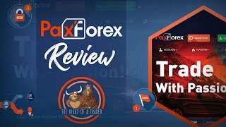 PaxForex Review 2019 - Is PaxForex a Scam or Legit Broker