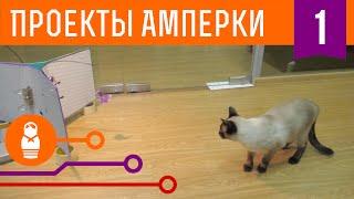 Фотобудка для кота. Проекты Амперки #1(, 2015-01-30T16:08:09.000Z)