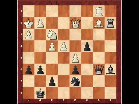 Finding attacking and defensive resources in chess