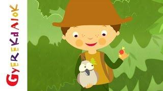 Erdő, erdő, erdő (gyerekdal, rajzfilm gyerekeknek)