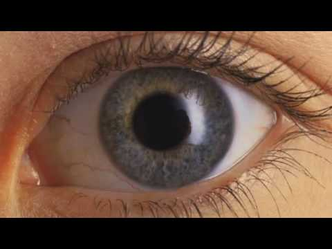 NSU Gives Tips on Contact Lenses Care