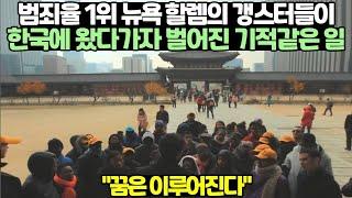 범죄율 1위 뉴욕 할렘의 갱스터들이 한국에 왔다가자 벌…