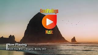Wish You Well - Sigala, Becky Hill Video