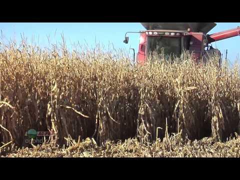 Farm Basics #759-Yield Monitors (Air Date 10/21/12)