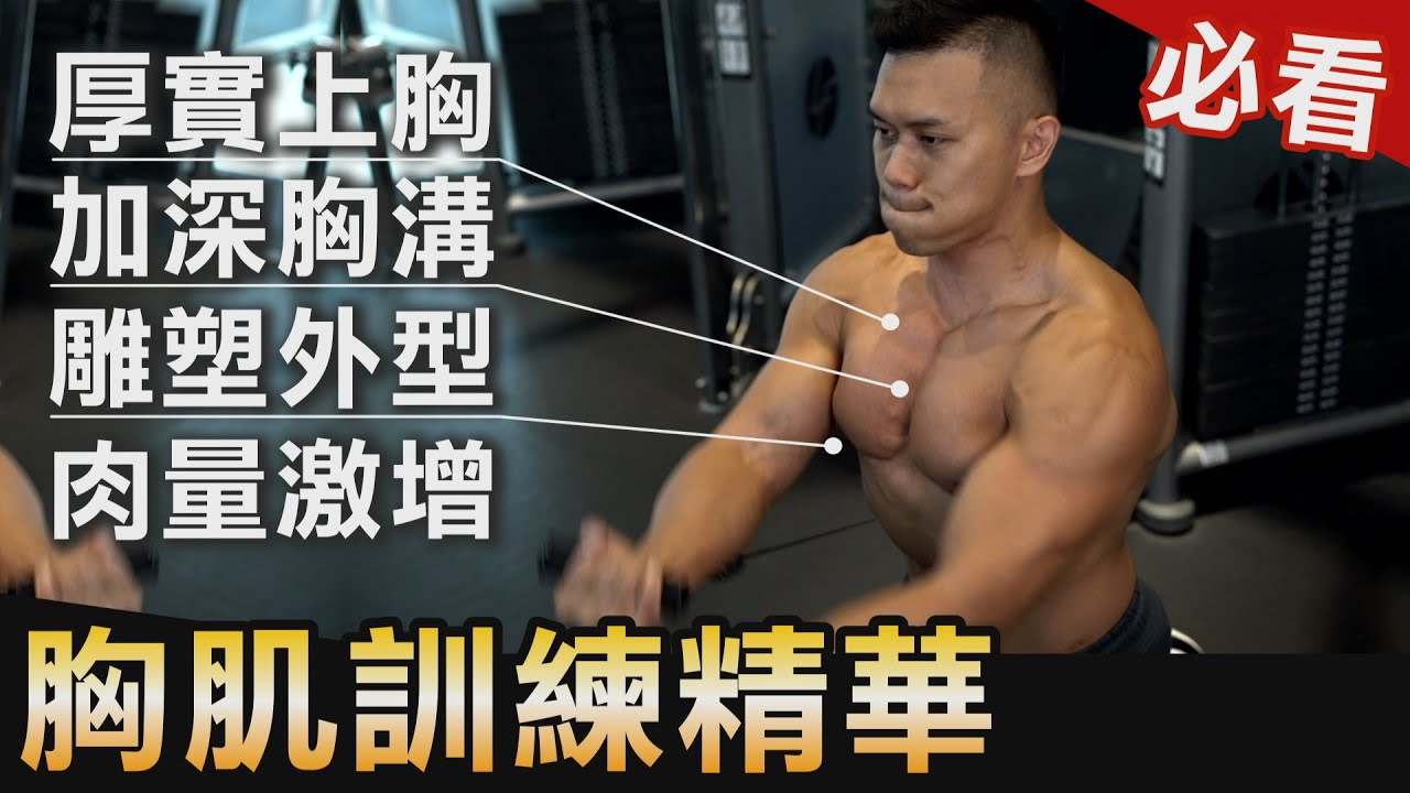 【打造完美胸肌】最難練的胸溝、胸形、肉量 練胸必看指南!│健人訓練│ 2020ep47