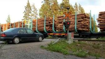Tavarajuna T55689 Lieviön (ent. Muijala) tasoristeyksessä