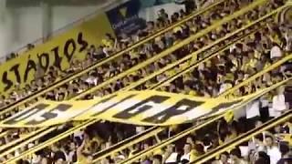 Os Tigres - Criciúma X Avai 21-08-2012