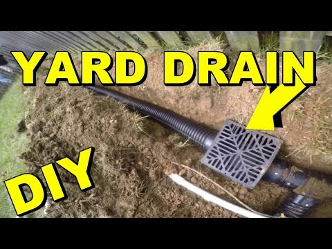 Yard Basin Installation in Dallas