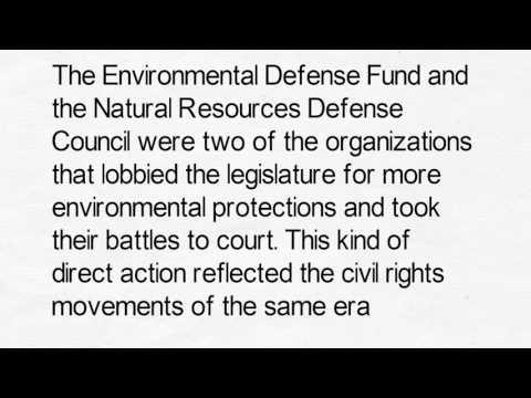 Militant Environmentalism