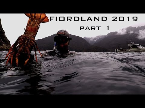 Fiordland Hunting And Fishing And Freediving New Zealand Josh James