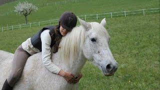 7 idées pour faire plaisir à son cheval