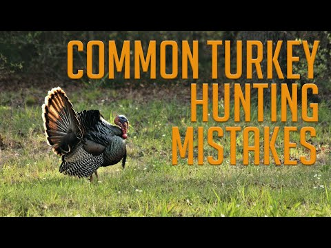 Common Turkey Hunting Mistakes!