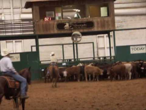 Cindy Love - NCHA Hall Of Fame Cutting Horse Cowgirl - YouTube