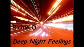 Richie D - Deep Night Feelings (Original Mix)