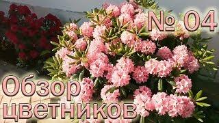 Обзор  цветников №4 (19.05.2018)