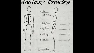 How to Draw Anatomy for Beginners, drawing Body Proportions
