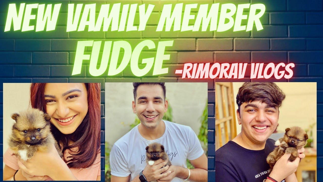 NEW VAMILY MEMBER - FUDGE || RIMORAV VLOGS || FT. RISHI ...