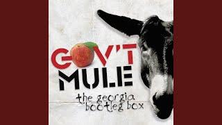 top tracks   govt mule
