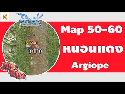 Ragnarok Exe ที่เก็บเลเวล 50 - 60 : หนอนแดง Argiope