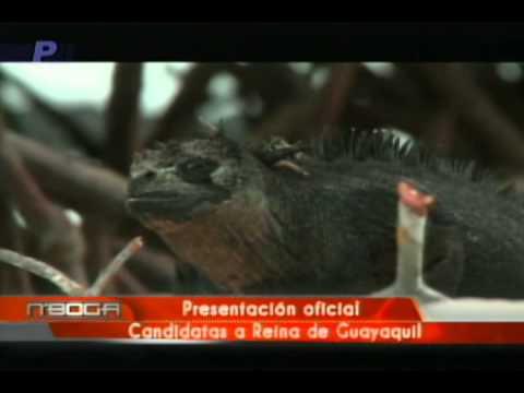 Presentación oficial candidatas a Reina de Guayaquil