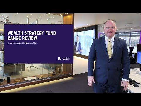 Wealth Strategy Fund - November 2016