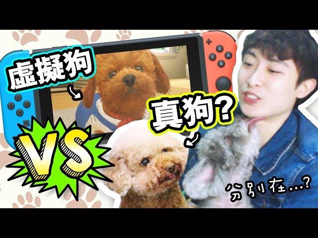 【🐶我要養虛擬狗啦~】😍和養真狗一樣嗎?還會抖動!:小小伙伴-狗狗&貓貓