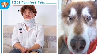 Dog Funny Moments 2021 V1  The end for cheating Duo Duo