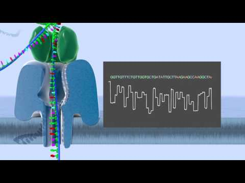 Sequencing DNA (or RNA) | Real-time, Ultra Long-Reads, Scalable Technology from Oxford Nanopore