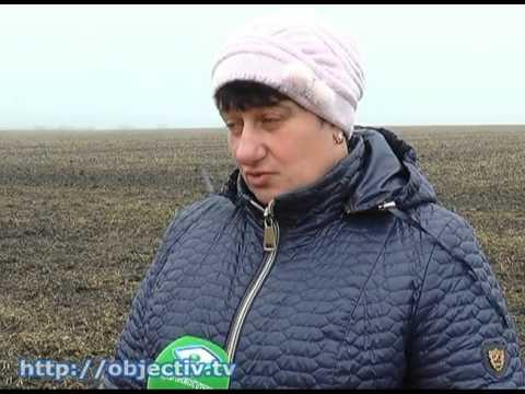 Земельный конфликт в Волчанском районе