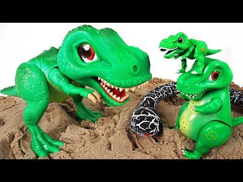 Dino Mecard Singing and moving SD tiny dinosaur Tyrannosaurus appeared! - DuDuPopTOY