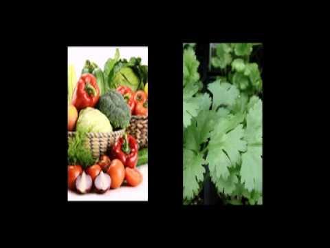 купить семена овощей в воронеже