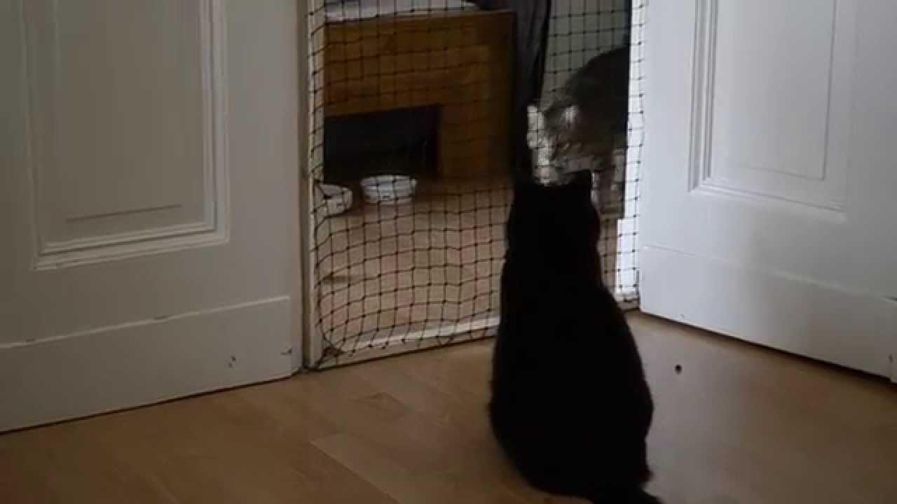 Türschutzgitter Für Katzen