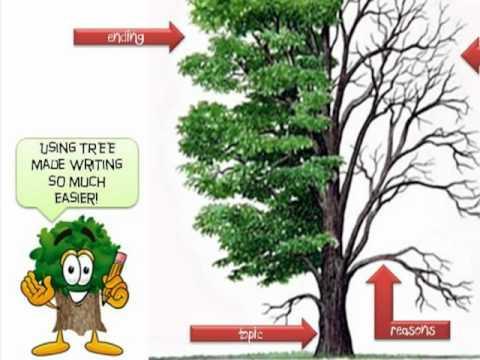 TREE Writing Strategy