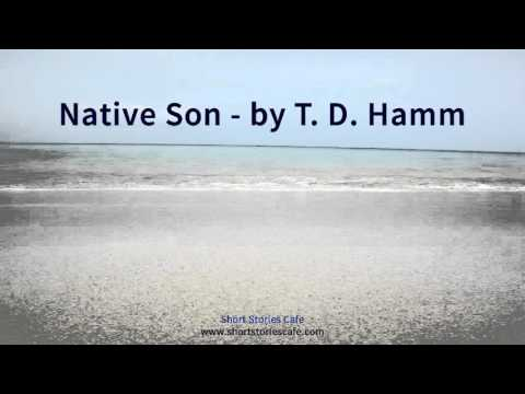Native Son   by T  D  Hamm