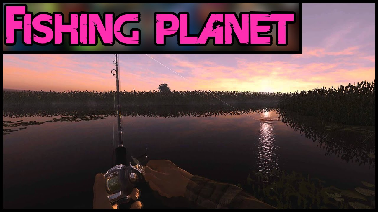 Fishing planet no great white sharks pc gameplay for Fishing planet game
