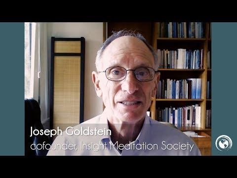 Joseph Goldstein - an Introduction to Worldwide Insight