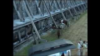2/ MOJE KONIE - 2005r.[OFFICIAL Film] Festival 2006 Ciechocinek -Janusz Laskowski