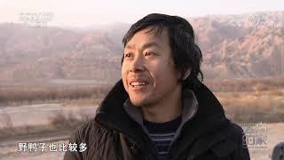 [远方的家]大好河山 青海贵德:天下黄河贵德清| CCTV中文国际