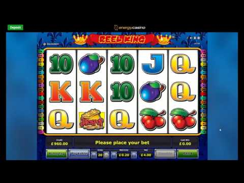 Online Slot Bonus Compilation - Book of Ra, Beetle Mania, Reel King and More