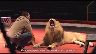 Video, Львы в цирке