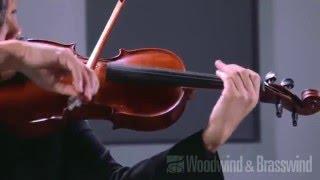 d addario zyex series violin string set